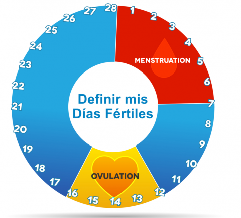 calendario-de-dias-fertiles-y-ovluacion